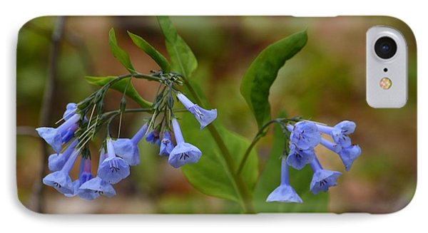 Virginia Bluebells IPhone Case by Randy Bodkins