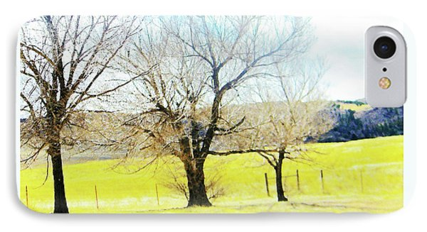 Virginia Dale-three Trees IPhone Case by Lenore Senior