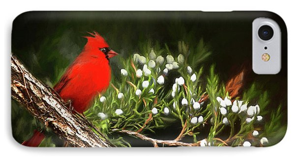 IPhone Case featuring the photograph Virginia State Bird by Darren Fisher