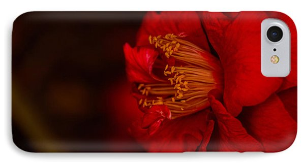 IPhone Case featuring the photograph Virtuoso  by John Harding