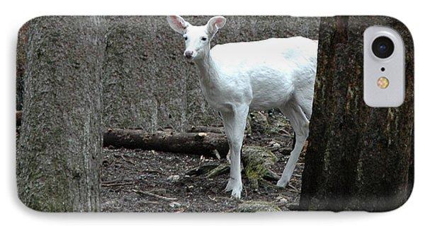 IPhone Case featuring the photograph Vision Quest White Deer by LeeAnn McLaneGoetz McLaneGoetzStudioLLCcom