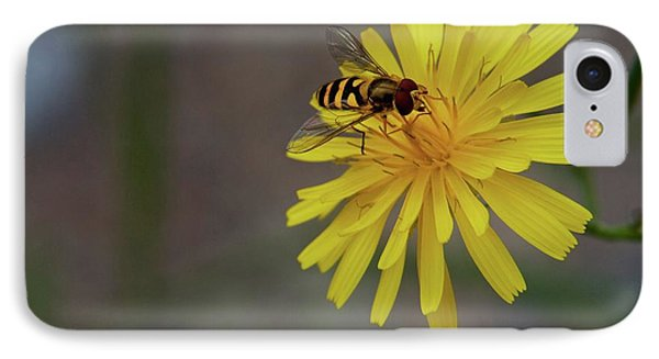 IPhone Case featuring the photograph Visitor by Scott Holmes