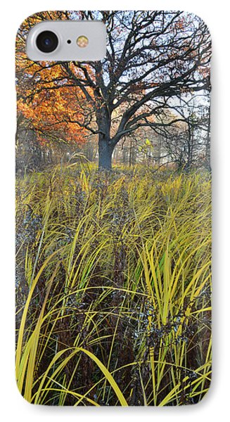 IPhone Case featuring the photograph Volo Bog Natural Area by Ray Mathis