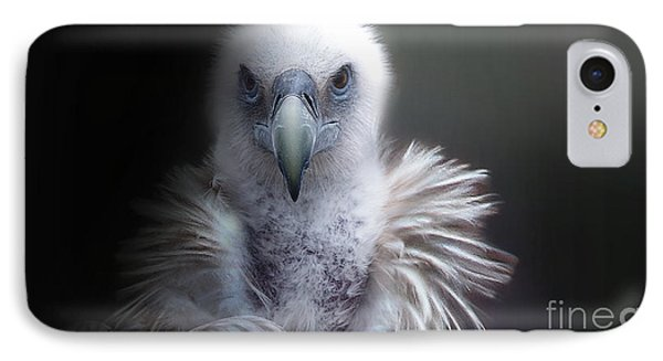 IPhone Case featuring the photograph Vulture 2 by Christine Sponchia