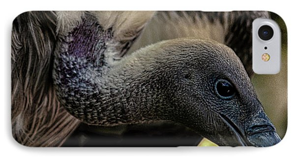 Vulture IPhone 7 Case by Martin Newman