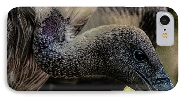 Vulture IPhone Case by Martin Newman