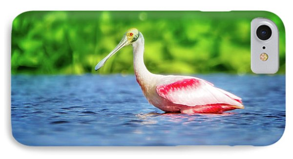Wading Spoonbill IPhone Case by Mark Andrew Thomas