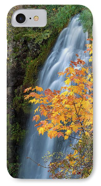 Wah Gwin Gwin Falls In Autumn Phone Case by David Gn