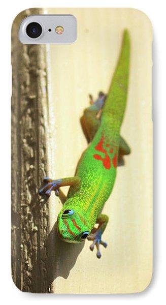 Waimea Gecko IPhone Case