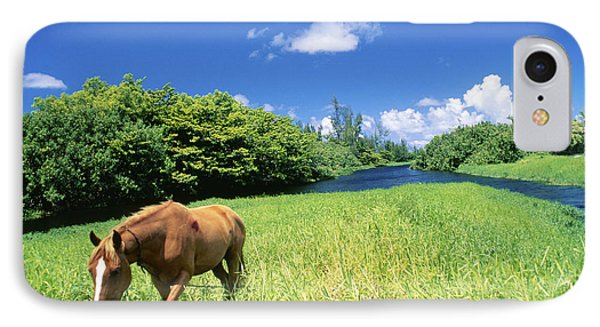 Wainiha Valley Phone Case by Peter French - Printscapes