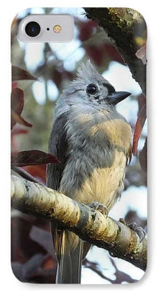 Waiting For Mom IPhone Case by Judy Wanamaker