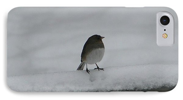 IPhone Case featuring the digital art Waiting For Spring by Barbara S Nickerson