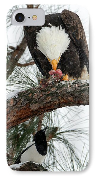 Magpies iPhone 7 Case - Waiting For The Scraps by Mike Dawson