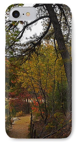 Walden Pond Path Into The Forest 2 IPhone Case by Toby McGuire