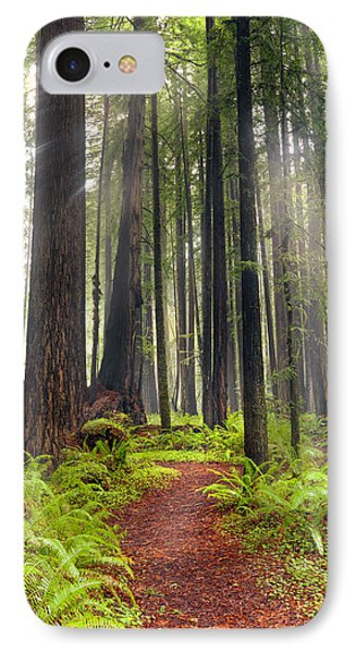Walk In The Woods IPhone Case by Leland D Howard