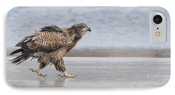 Walk Like An Eagle IPhone Case by Kelly Marquardt