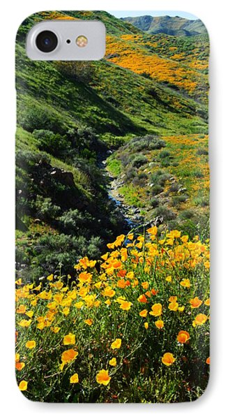 Walker Canyon Vista IPhone Case by Glenn McCarthy Art and Photography