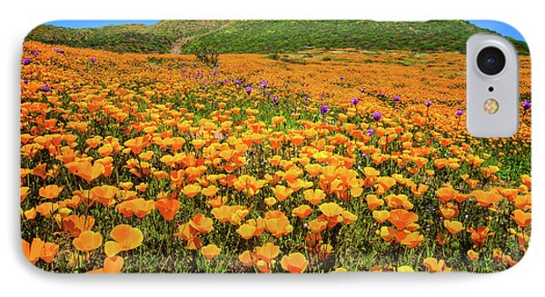 Walker Canyon Wildflowers IPhone Case