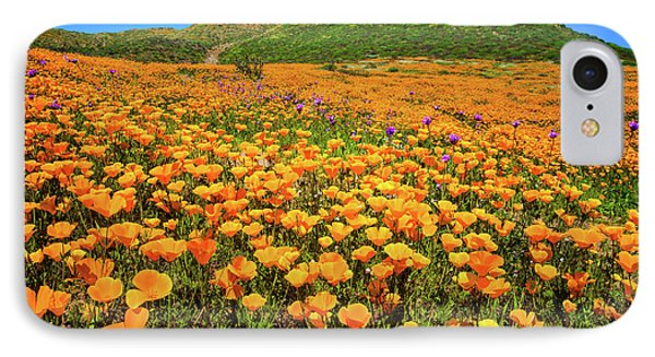 Walker Canyon Wildflowers IPhone Case by Lynn Bauer