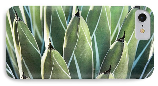 IPhone Case featuring the photograph Wall Of Agave  by Saija Lehtonen