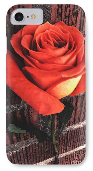 Wallflower IPhone Case by Charlie Cliques
