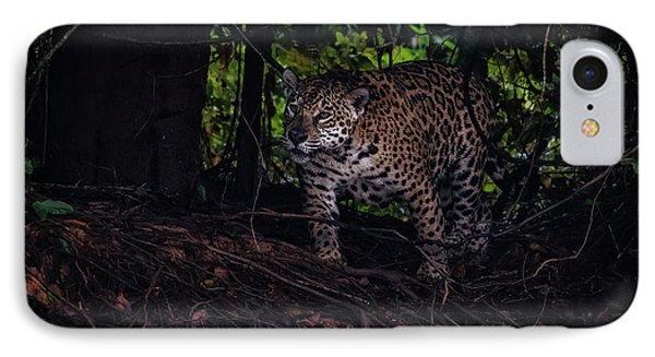 Wandering Jaguar IPhone Case by Wade Aiken