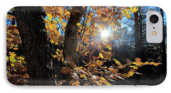 Waning Autumn IPhone Case by Gary Kaylor