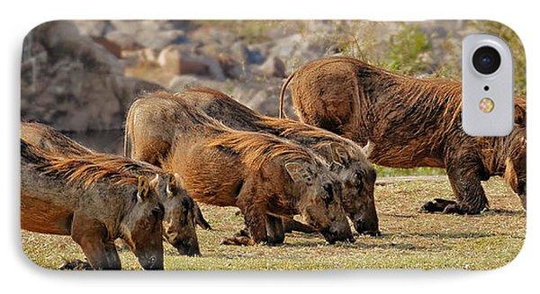 Warthogs Doing Lunch IPhone Case by Joe Bonita