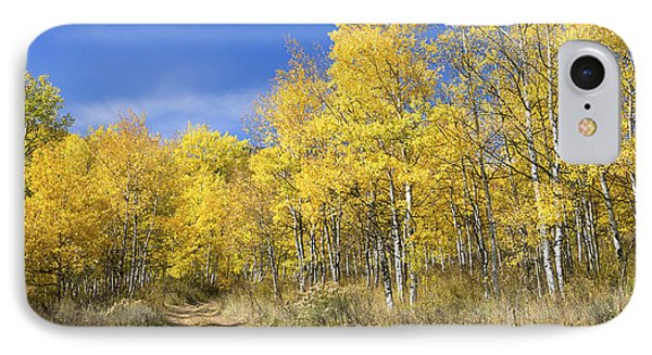 Wasatch Fall IPhone Case by Chad Dutson