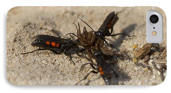 Wasps With Spider IPhone Case