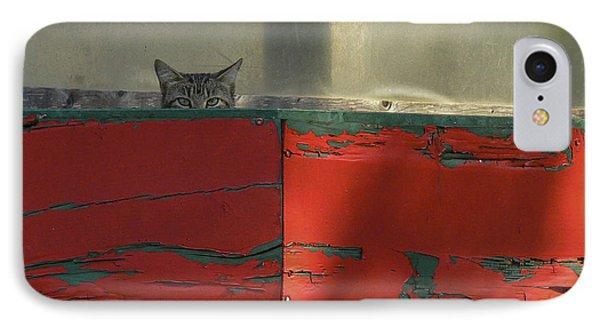 Watchful Cat IPhone Case by Allen Sheffield