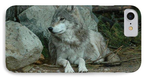 Watchful Wolf IPhone Case by Sandra Updyke