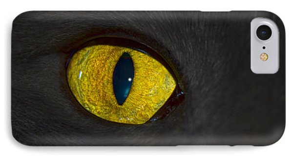 Watching You IPhone Case by Shane Bechler