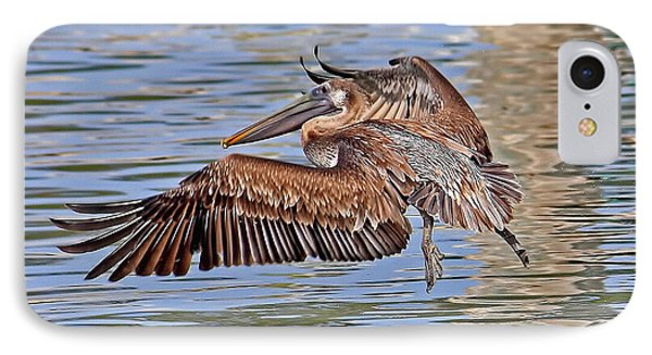 Water Ballet - Brown Pelican IPhone Case by HH Photography of Florida