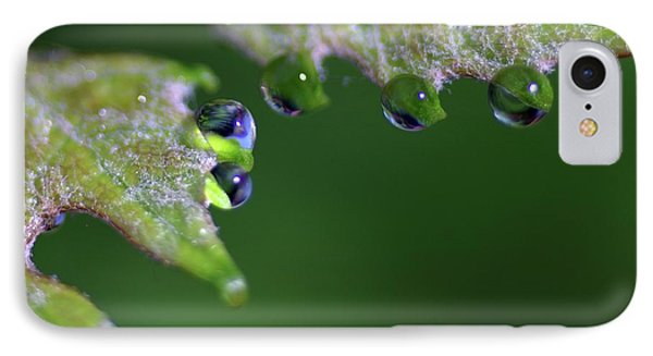 IPhone Case featuring the photograph Water Droplet IIi by Richard Rizzo