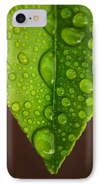 Water Droplets On Lemon Leaf IPhone Case by Ralph A  Ledergerber-Photography