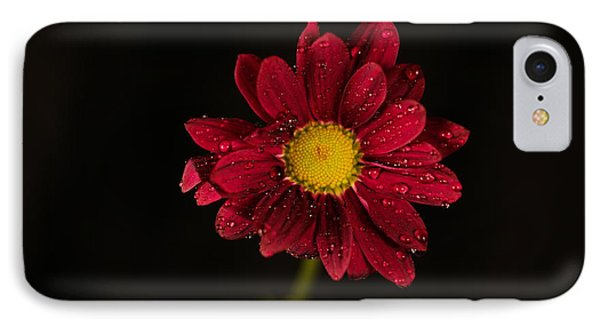 IPhone Case featuring the photograph Water Drops On A Flower by Jeff Swan