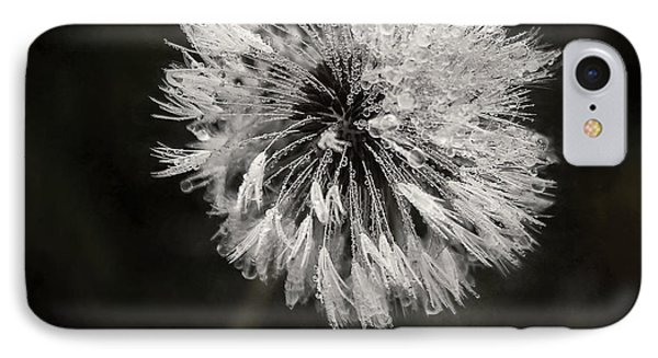 Water Drops On Dandelion Flower IPhone Case by Scott Norris