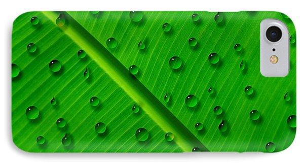 Water Drops On Palm Leaf IPhone Case by Georgeta Blanaru