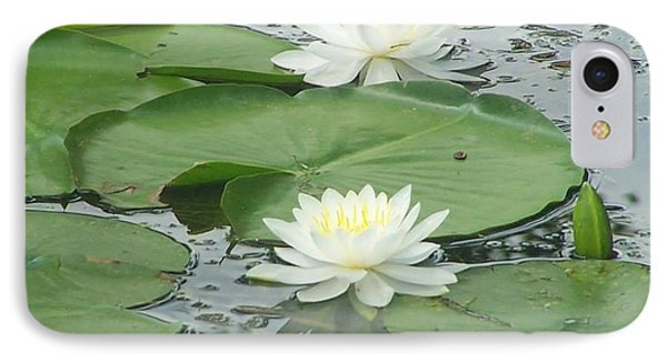 Water Lilies At Conesus Lake IPhone Case by Charlotte Gray