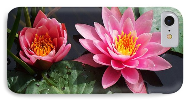 Water Lilies IPhone Case by Joy Nichols