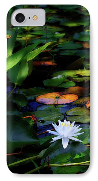 Water Lily IPhone Case by Bill Wakeley