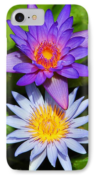 Water Lily Blossoms IPhone Case