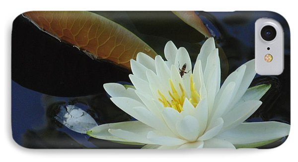 IPhone Case featuring the photograph Water Lily by Daun Soden-Greene