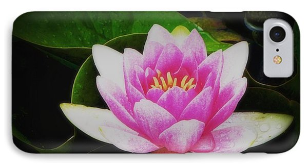 IPhone Case featuring the photograph Water Lily by Karen Shackles