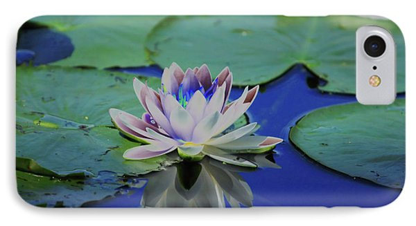 Water Lily  Phone Case by Karol Livote