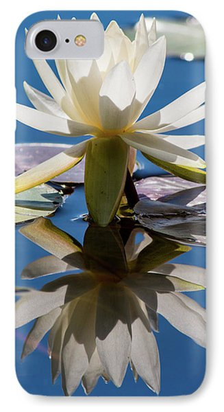 IPhone Case featuring the photograph Water Lily by Mary Hone