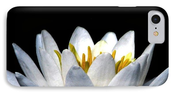 Water Lily Petals Phone Case by Angela Davies