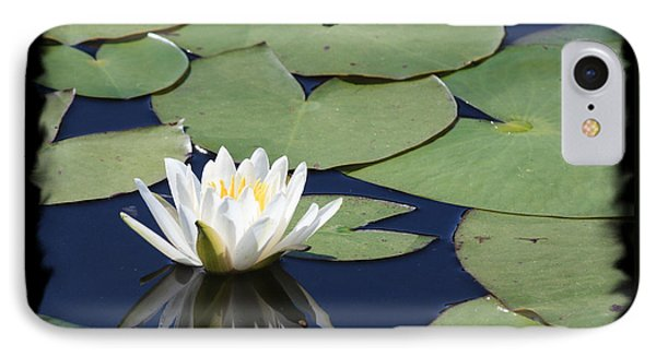 Water Lily With Black Border Phone Case by Carol Groenen