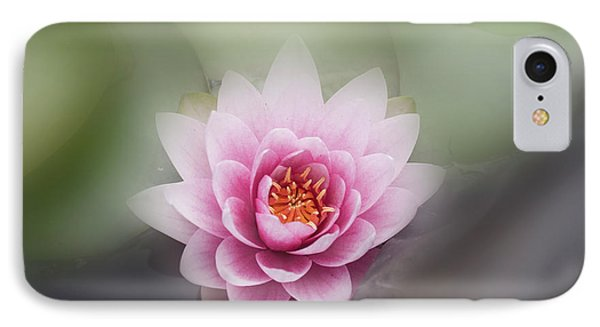 Water Lotus Flower IPhone Case by Elaine Teague